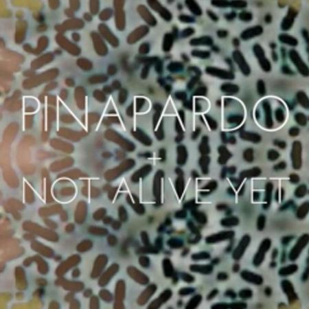 PINAPARDO + NOT ALIVE YET
